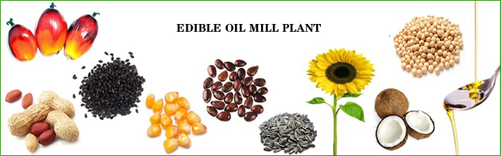 palm kernel oil production process