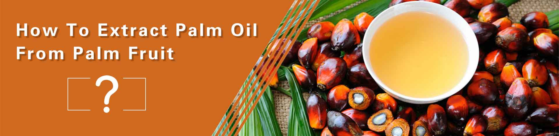 palm oil extraction technology