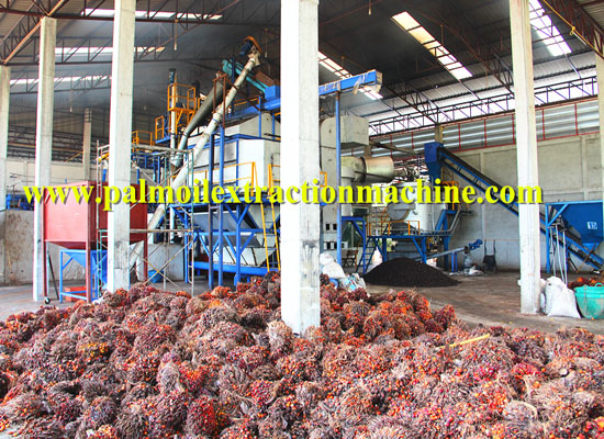 2015 Palm oil Industry Trend