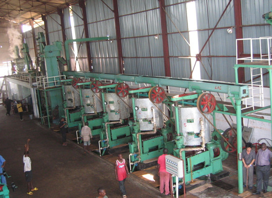 Can palm kernel oil press machinery replace common