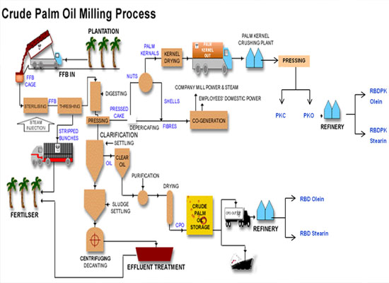 crude palm oil process flow chart
