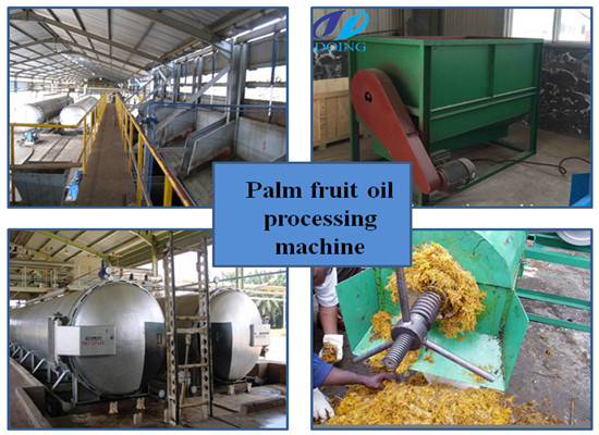 (FFB) Palm fruit oil processing plant