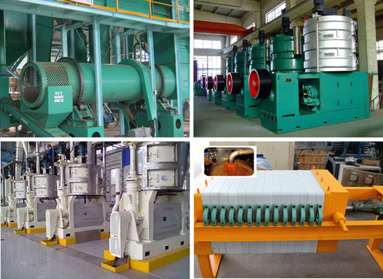 Nigeria customer buy palm kernel oil processing machine from Doing