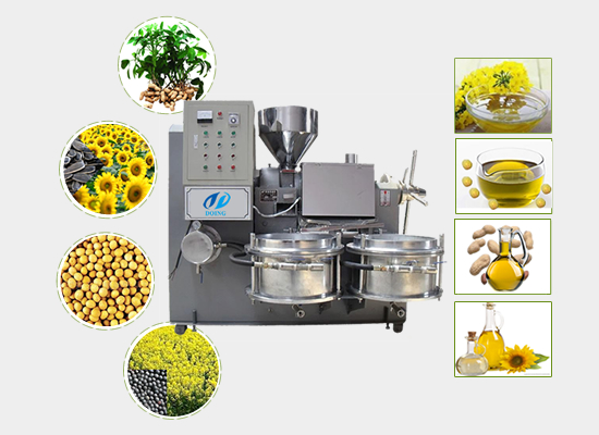 Rapeseed screw oil press machine