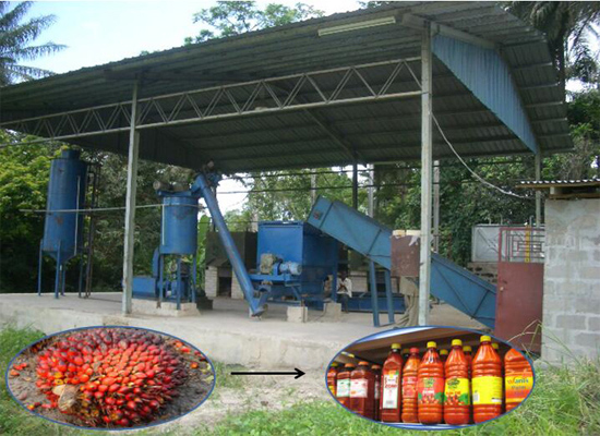 Traditional VS modern Africa palm kernel oil proces