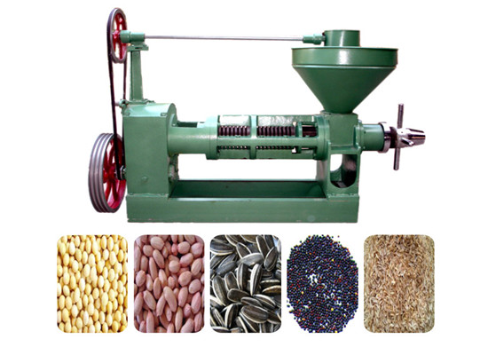 Groundnut oil screw presser
