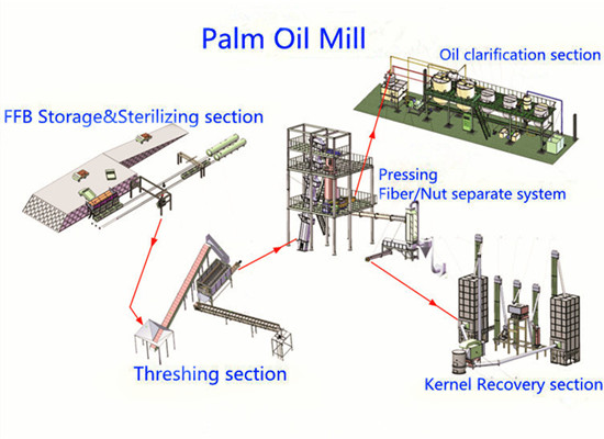 Business opportunities in the red palm oil production in Africa