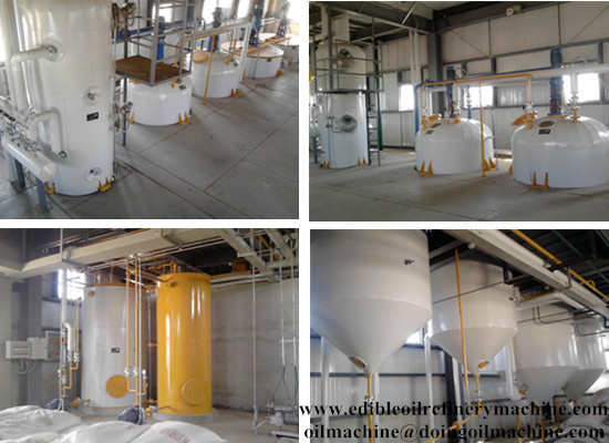 Palm kernel oil mill/palm kernel oil refining machine