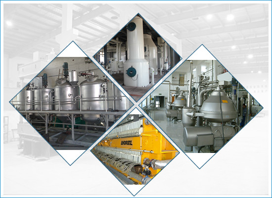 Widely used palm kernel oil refining machine/oil refinery plant