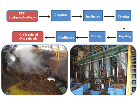 Turn-key palm oil mill/palm oil processing machine