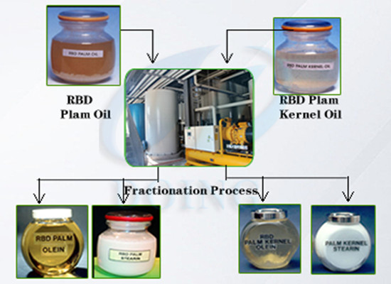Palm oil refinery plant/palm oil fractionation and crystallization process