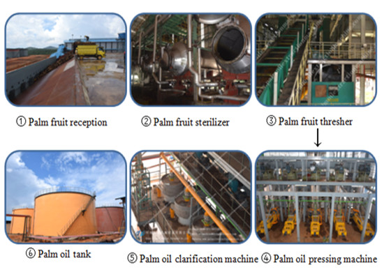 Crude palm oil production machine