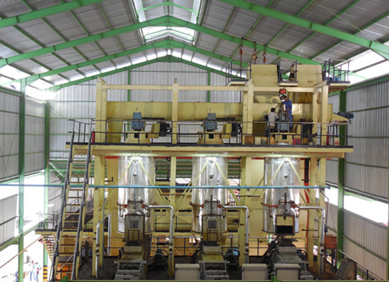 Palm oil processing line