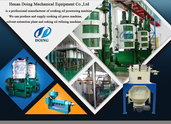 Large capacity palm kernel oil mill machinery