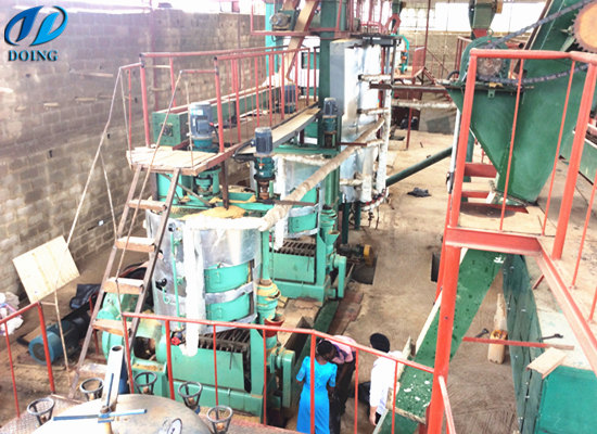 60tpd palm kernel oil extraction plant in Ondo, Nigeria
