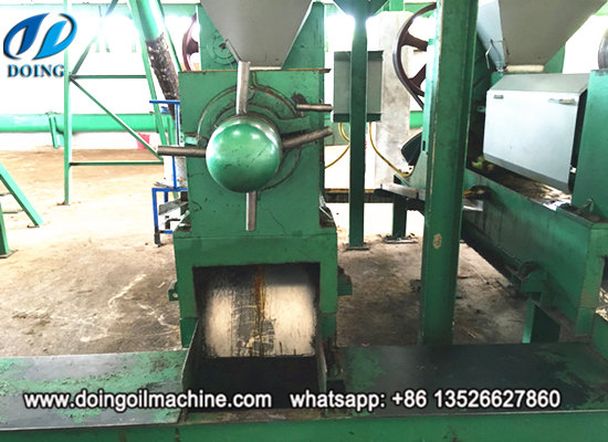 Palm kernel oil expeller, palm kernel oil extraction machine running video