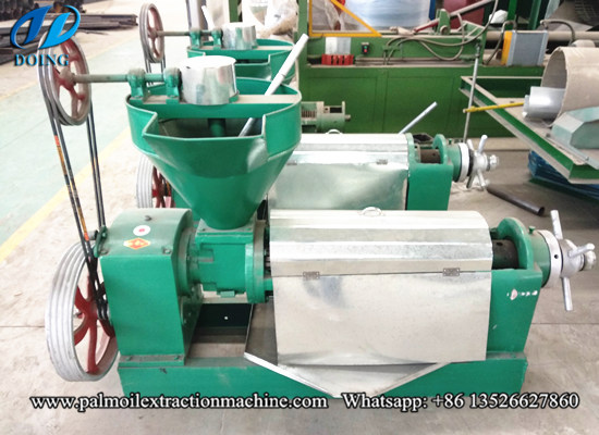 Where you can get the best palm kernel oil extraction machine in Malaysia?