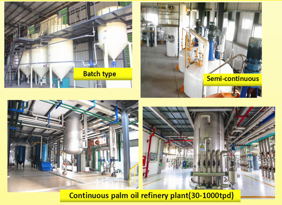 1-1000tpd palm oil refinery plant