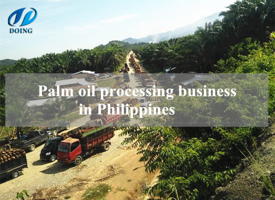 Palm oil processing business in Philippines