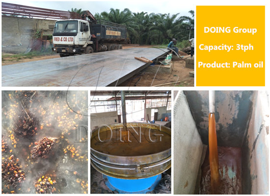 Nigeria 3tph palm oil processing machine production status