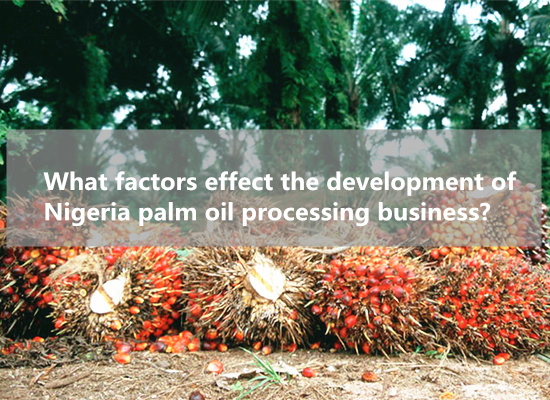 What factors effect the development of Nigeria palm oil processing business?