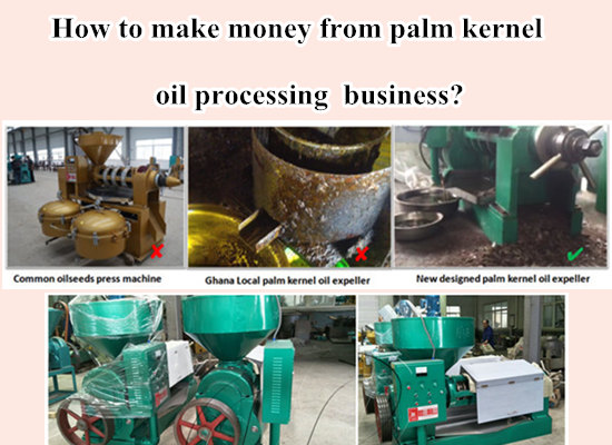 How to Make Money from Palm Kernel Oil Processing Business?