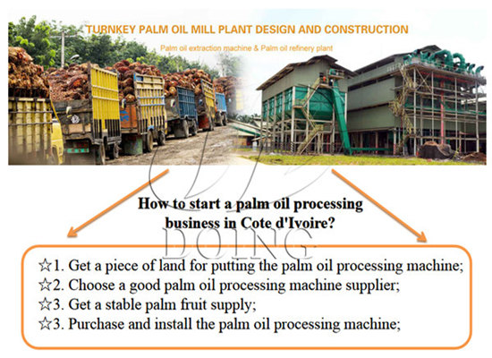 How to start a palm oil processing business in Cote d'Ivoire?