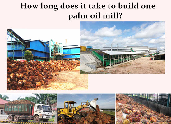 How long does it take to build one palm oil mill?