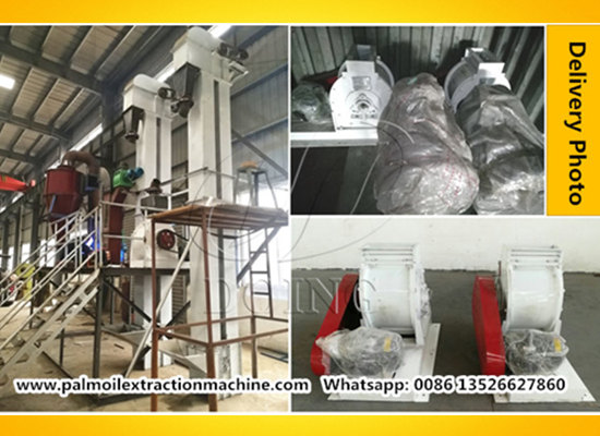 3tph palm kernel cracking and separating machine exported to Uganda