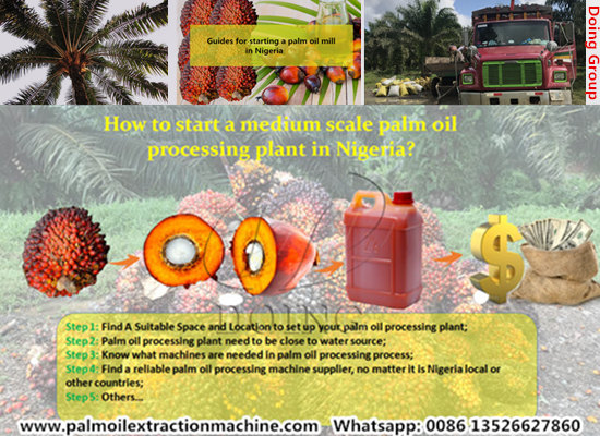 How to start a medium scale palm oil processing plant in Nigeria?