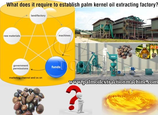 What does it require to establish palm kernel oil extracting factory?