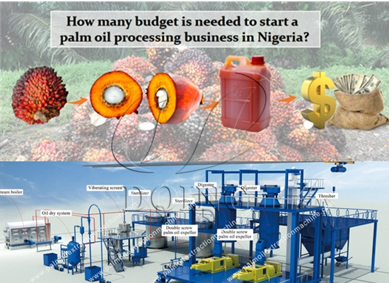 How many budget is needed to start a palm oil processing business in Nigeria?