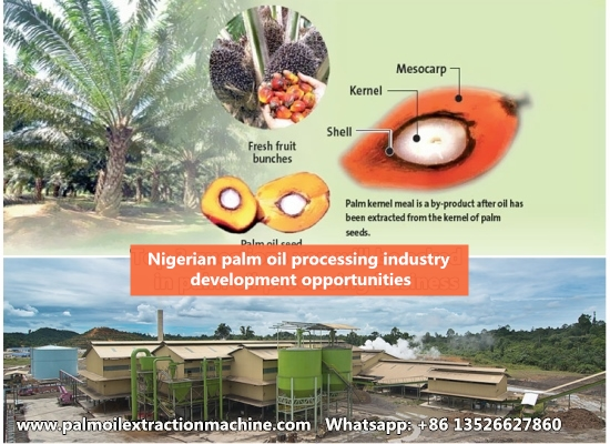 Government Policy and the Nigerian palm oil processing industry development opportunities
