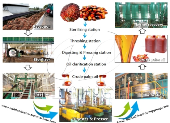 Where can I buy ready made palm oil processing machine?