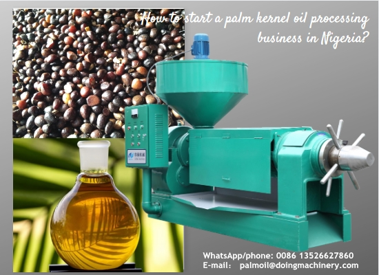 How to start a palm kernel oil processing business in Nigeria?