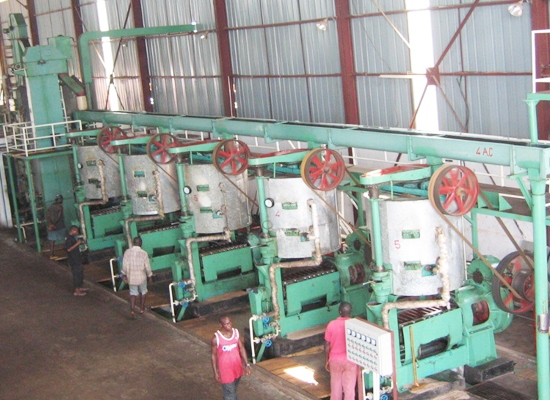 Automatic palm kernel oil press production line