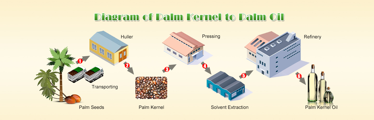 Palm oil processing line diagram