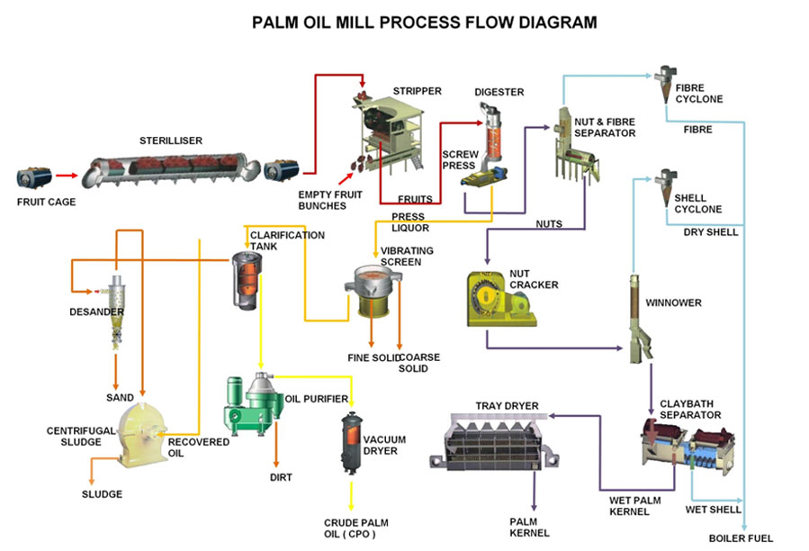 Palm Oil Mill Processmanufacture Palm Oil Extraction Machine To