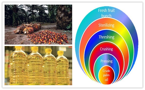 how is palm oil made