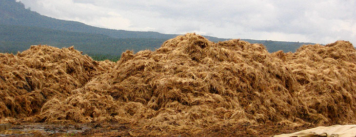 What is the waste in palm oil mill? How to recycling the waste?_Palm Oil Extraction FAQ pakm oil mill730 x 282 jpeg 99kB