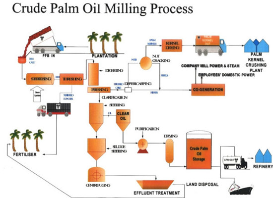 crude palm oil milling machine