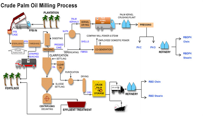palm oil press process