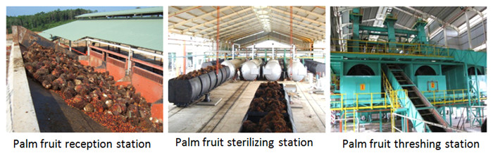 palm oil mill palnt