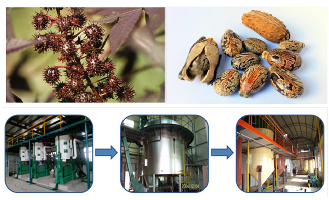 castor oil production process machinery