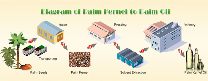 palm oil extraction line