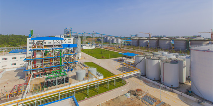palm kernel oil refinery plant