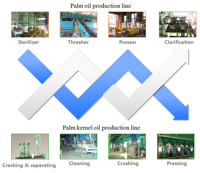 palm kernel production machine