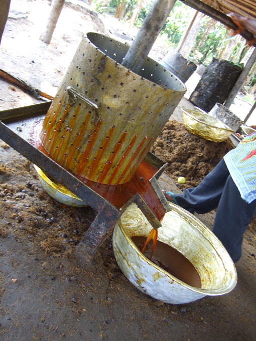 palm oil squeezing machine
