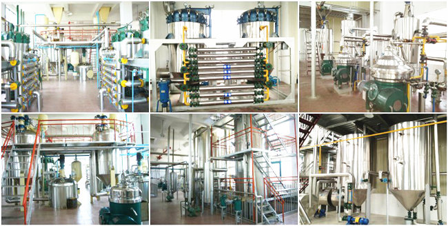 large capacity palm kernel oil refinery equipment