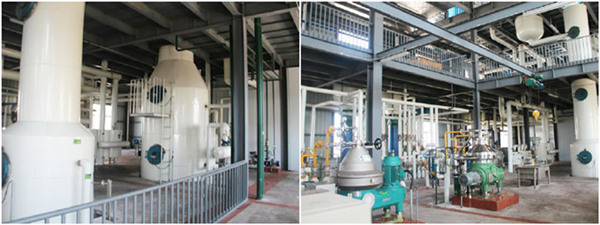 palm oil deodorization machine